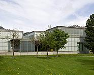 Musée Kirchner