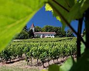 Der Weinanbau Genfs
