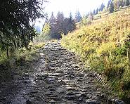 The «HD-Weg» near Habkern