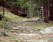 Cavaglia–Poschiavo (Passo del Bernina)