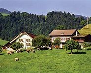 Ferienhof-Rossweid