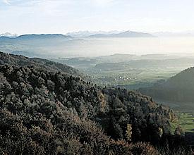 Wildnispark Zürich Sihlwald