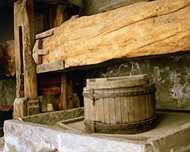 Traubenpresse in Sessa (Malcantone)