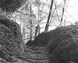 Lungern–Brünigpass