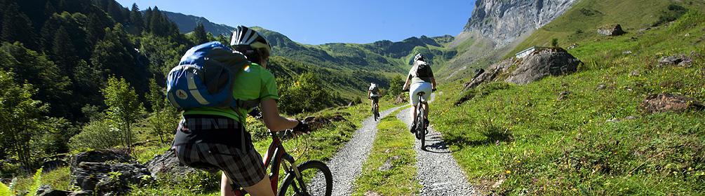 404 Gitschital Bike