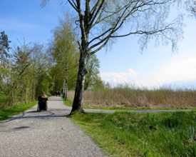 Obersee-Uferweg